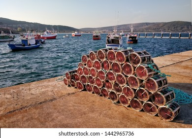 Octupus traditional fishing cage. These traditional cages, called nasa in Spanish, are used to capture octupus, one of the most important seafood in Galicia.