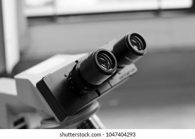 Ocular lens Light Microscope