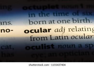 ocular word in a dictionary. ocular concept.
