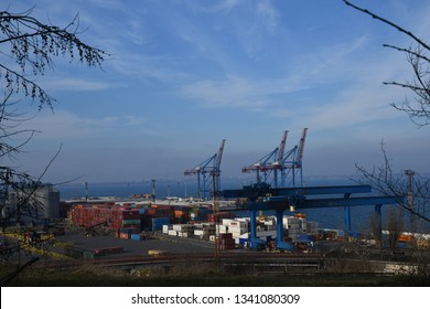 Odessa / Ukraine - 03 14 2019: Panoramic view of container terminal of Odessa sea port in Ukraine. Cranes and container open area on wharf. Industrial landscape framed by tree branches.