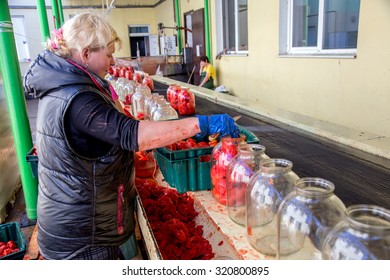 ODESSA, UKRAINE - 25 September 2015: The working process of production of tomatoes to canned fruit and vegetable factory. Workers on the production of canned food. Processing vegetables.