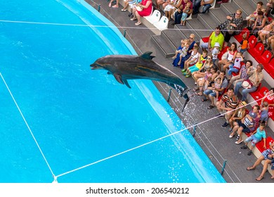 ODESSA, UKRAINE - July 20, 2014: Dolphins on creative entertainment show at the dolphinarium houseful of guests show amazing stunts. Spectators happily thrilled July 20, 2014 in Odessa, Ukraine