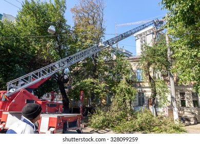 Odessa, Ukraine - October 14, 2015: Working chainsaw cut dry wood. Groundscare urban service eliminates emergency trees with the help of crane. Emergency Prevention