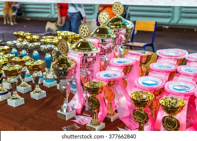 ODESSA, UKRAINE - September 20, 2015: International Dog Show. Purebred dogs are fighting for the victory in the competition breeds. Kennel Club. Prizes and medals of the exhibition winners