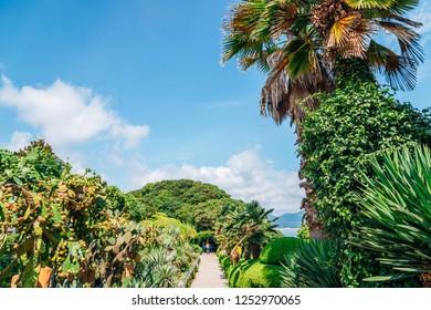 Oedo-Botania island tropical garden scenery at summer in Geoje, Korea