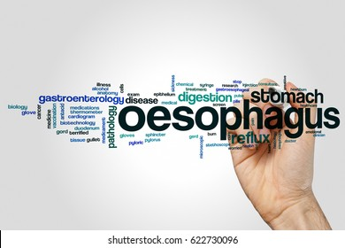 Oesophagus word cloud concept on grey background