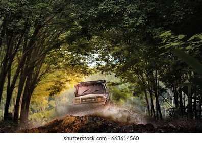 Off road vehicle coming through the trees tunnel.Travel and racing concept for four wheel drive off road vehicle .