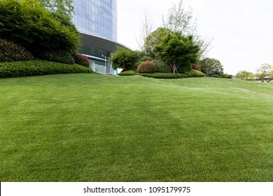 Office building green space