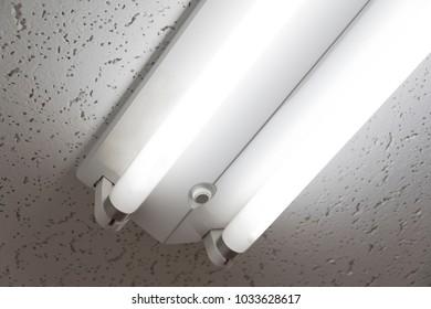 Office Ceiling Fluorescent Light 3 Wavelength Stock Photo (Edit Now ...