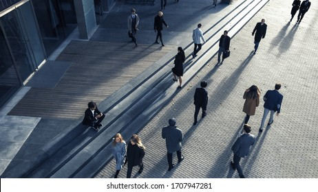 Office Managers and Business People Commute to Work in the Morning or from Office on a Sunny Day on Foot. Pedestrians are Dressed Smartly. Successful People Walking in Downtown. Shot from Above.
