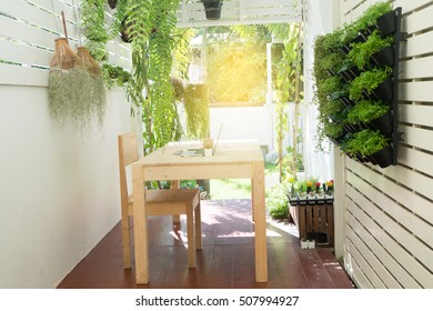 Office place at home, Natural Office on tree garden, wood  table with notebook, coffee cup, cactus flower at tree garden. Tree pot hang on fence at garden with sunlight effect.