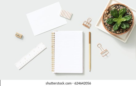 Office supplies in rose gold color with crassula houseplant