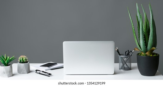 Office table with laptop and house plants on grey background, copy space. Modern workplace concept