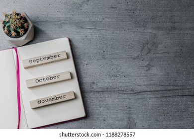 Office table with opened notebook, cactus, wooden signs ' November', 'October', 'September'. Top view image. Copy space
