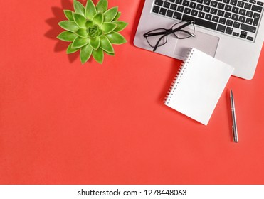 Office workplace flat lay. Laptop, notebook, green succulent plant on coral background