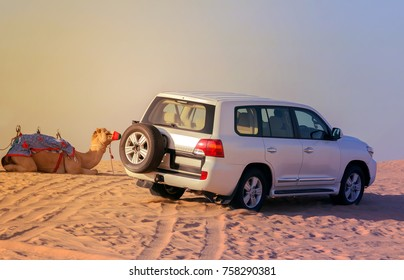 Offroad Adventure Drive 4x4, camel safari on sand dunes on the desert, background in vintage tone.