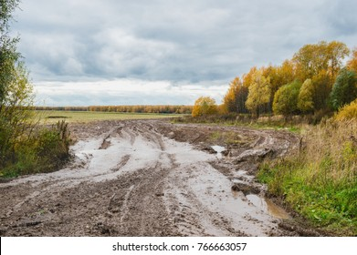 Off-road after rain, forest country road, autumn rural landscape
