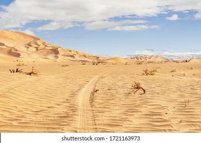 Offroad safari in the Omani desert during summer