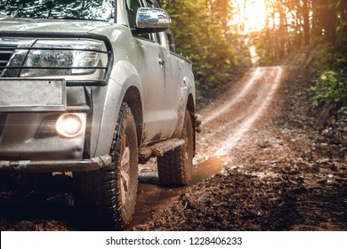 Off-road travel in the forest road. with light of sunset