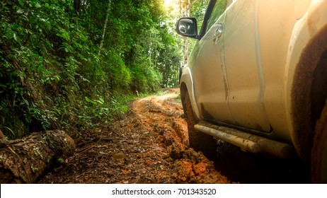 Off-road travel on mountain road. Beautiful nature in rainy of Asia