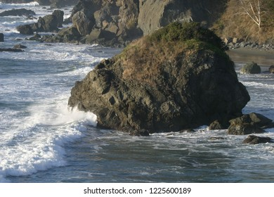 Offshore rock and vegetation, Luffenholtz Beach County Park, California, USA