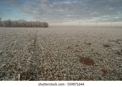 Offshore Windmill farm Westermeerwind windmills on a cold snowy winter morning by Urk Flevoland Noordoostpolder January 2017