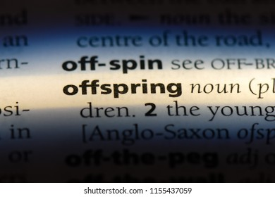 offspring word in a dictionary. offspring concept.