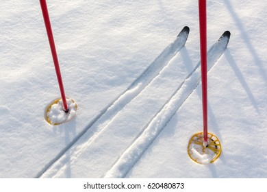 Off-track cross-country skis and red ski poles on untouched clean white snow.