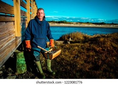 Ogunquit, Maine USA: October 28th, 2018: A Maine clammer is standing on the marshland of the Ogunquit River next to a wooden bridge after harvesting a fresh bushel of Maine clams.