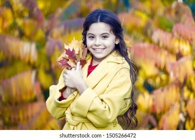 Oh autumn your colors are beautiful. Little girl have fun playing with colorful autumn leaves. Happy child walk on autumn landscape. Small kid enjoy walking in autumn park. Happy fall.