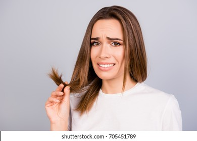 Oh no! Close up portrait of frustrated young brown haired woman holding her hair wih separated dry ends, standing on a light grey background