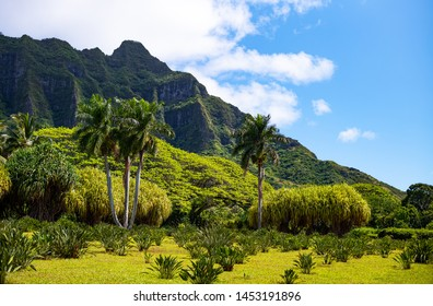 Ohahu island, Hawaii, the green Ko Olau volcanic mountains in the north east area of the island
