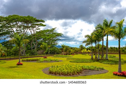 Ohahu island, Hawaii - May 1, 2019: The Dole plantation in the central area of the island