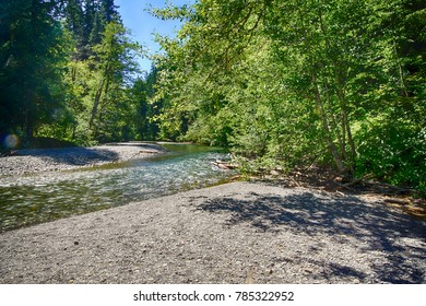 Ohanapecosh River near the Grove of the patriarchs, Ohanapecosh, Mount Rainier National Park, Washington