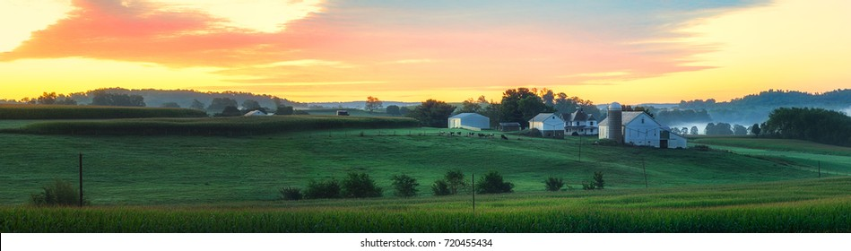Ohio Farm House Barn Silo Foggy Sunrise with Cows and Livestock