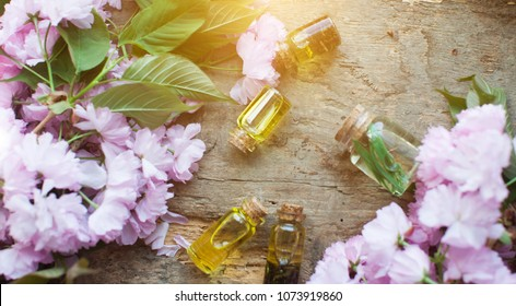 Oil. Bottles. Three oil bottles. Wooden table. Green leafs. Top view. Spring tree with pink flowers. Pink flowering tree over nature background / Spring tree / Spring Background.