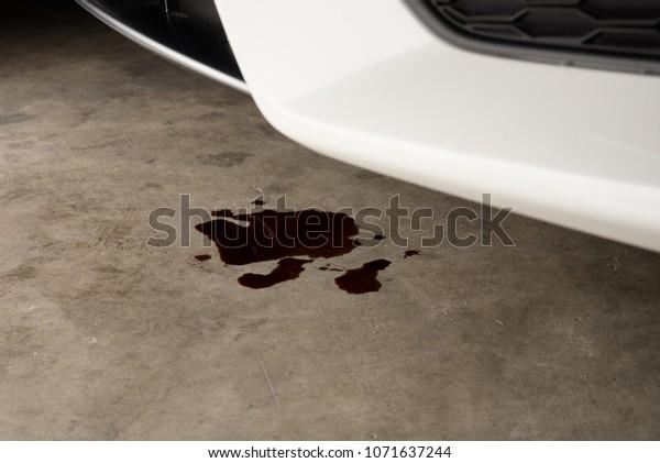 Oil Leak In Car >> Oil Leak Drop Engine Car On Stock Photo Edit Now 1071637244