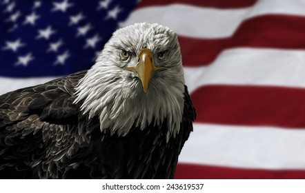 Oil painting of a majestic Bald Eagle against a photo of an American Flag.