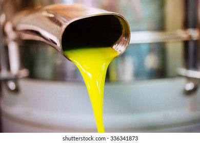 Oil is pouring from the tube at a cold-press factory after the olive harvesting in one of the sicilian villages, Italy