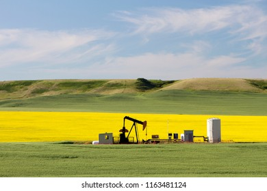 An oil pumpjack is the overground drive for a reciprocating piston pump in an oil well. It is used to mechanically lift liquid out of the well.