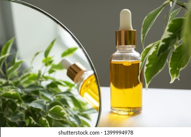 Oil serum in glass bottle with pipette, leaves and mirror. Concept natural organic cosmetic