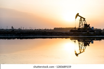 The oilfield with pump units