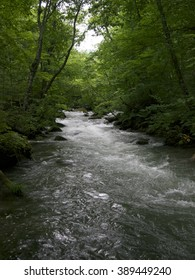 Oirase Stream?Aomori,Japan
