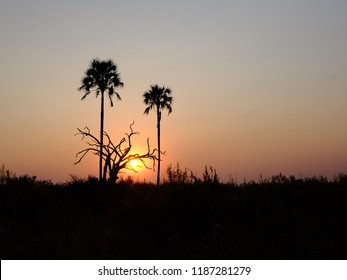 Okavango Sunset, Botswana, Africa