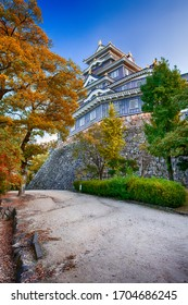 Okayama Crow Castle or Ujo Castle in Okayama City on the Asahi River in Japan. With Maple Trees on Foreground. Vertical Shot