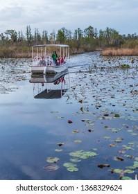Okefenokee Swamp, Folkston, GA, USA-3/29/19:  A tourist skiff in the Okefenokee Swamp.