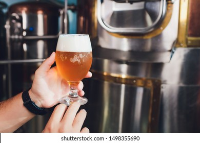 Oktoberfest festival. Tasting fresh brewed beer. Brewer holds glass with craft beer. Brewery concept. Man with beer of mug. Alcohol. Male brewer holds glass with beer. Oktober fest. Barman. Brewer.