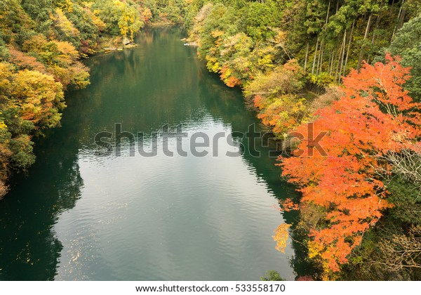 Okutama and Tamagawa river in autumn at Shiromaru