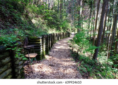 """""""Okutama therapy road"""" aimed at forest therapy, Okutama, Tokyo, Japan. The road is covered with woodchips for comfortable walking. The bench is for forest therapy and rest. Images for forest therapy."""