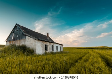 Old abandoned barn in a grainfield in Lower Austria at sunset